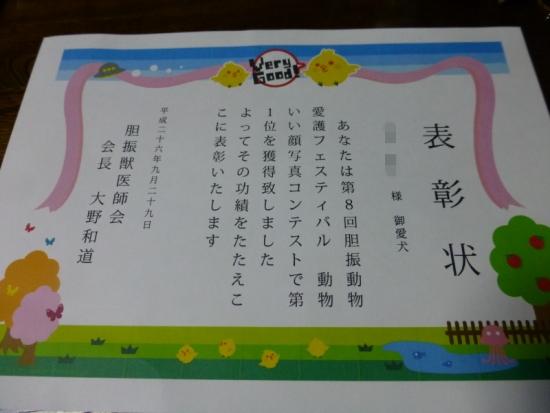 P1190033;AZUKI