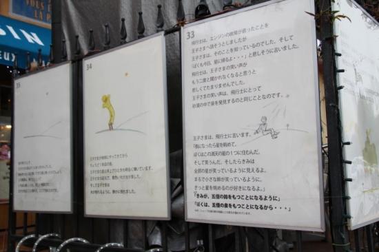 IMG_3848_AZUKII.jpg