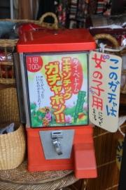 IMG_4468_AZUKI.jpg