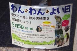 IMG_6399_AZUKI.jpg