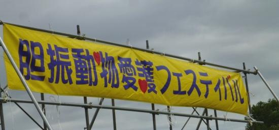 P1180213_AZUKI.jpg