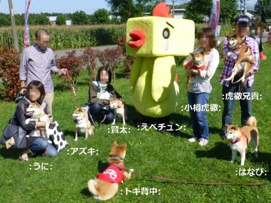 P1180644_AZUKI.jpg