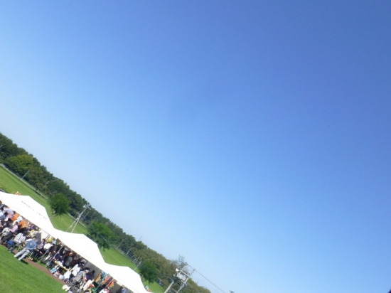 P1180721_AZUKI.jpg