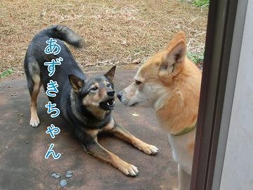 s-matuwa140416-CIMG6834