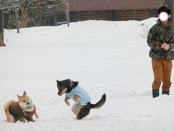 s-snow140509-CIMG7228