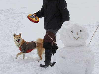 s-snowIMG_2007.jpg