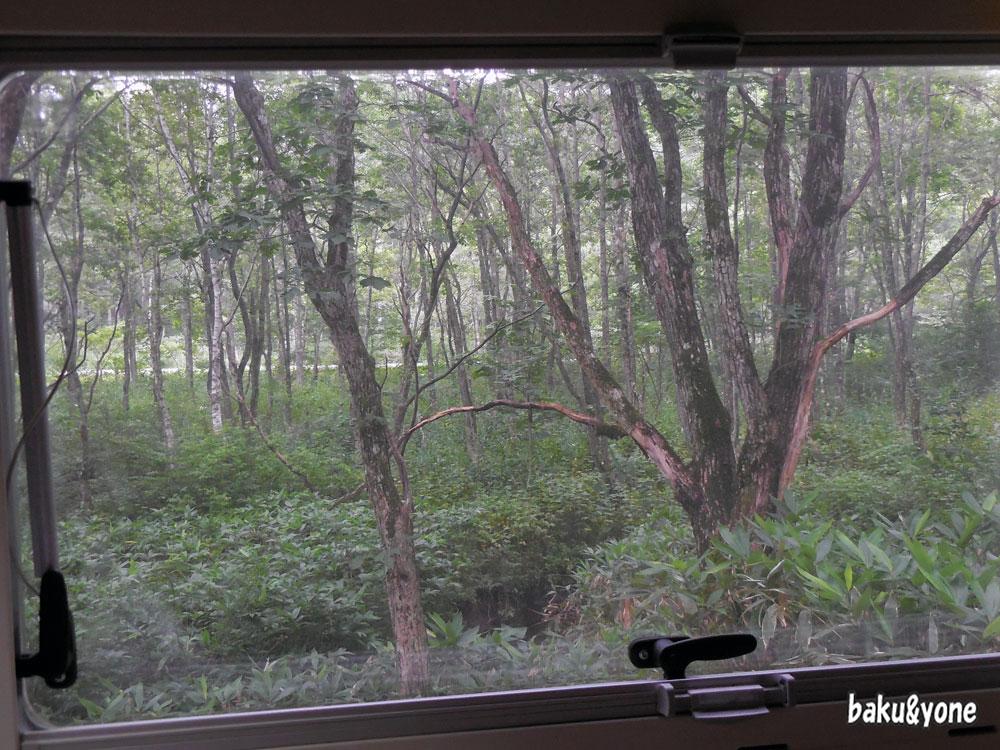 クマでそうな窓の景色01