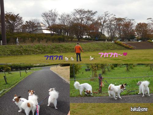 長峰公園3枚