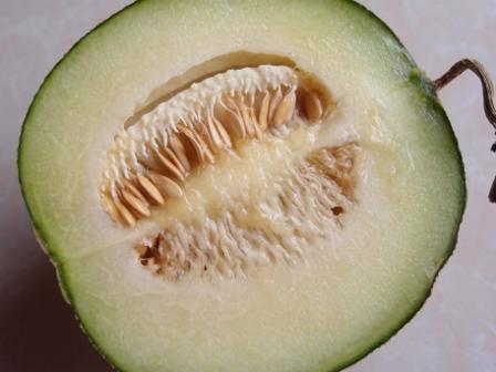 Thai Melon2