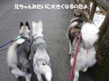 20140309_8.jpg
