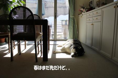 2014_02_25_1.jpg
