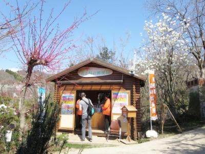 花見山 (6)