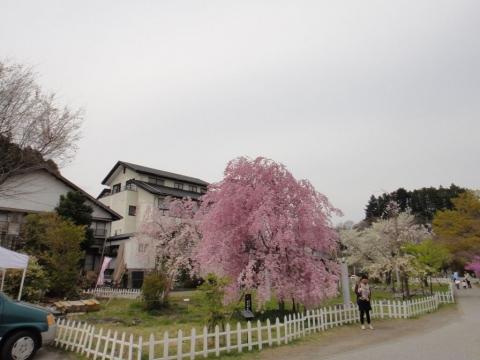 2014-04-13 009
