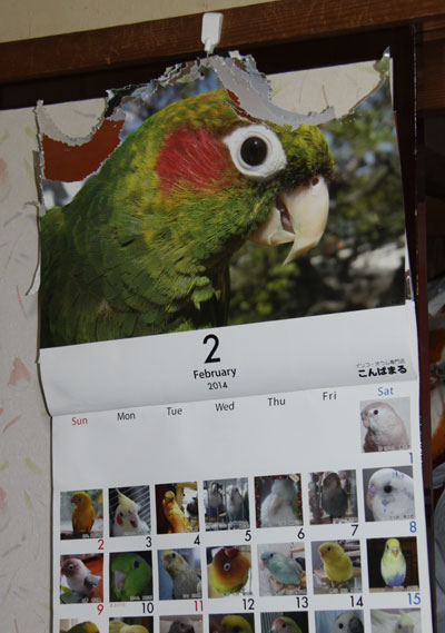 1_2月カレンダー