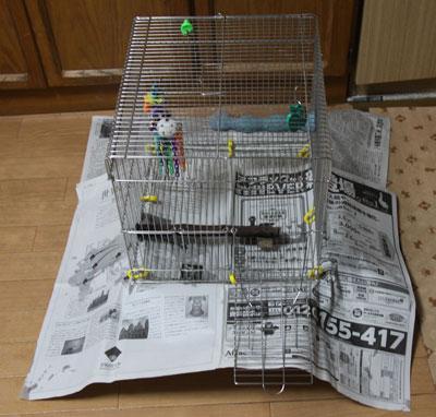 12_新聞紙
