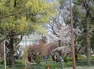 9_芝公園