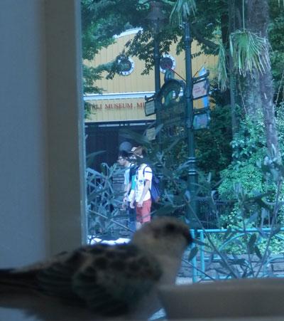 17_鳥カフェ7_ジブリ前