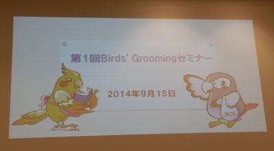 第一回Bird_Groomingセミナー