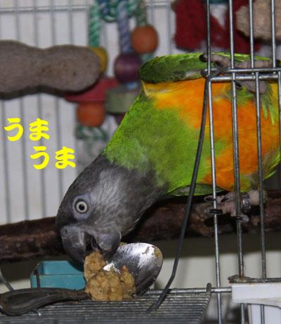 13_横取り