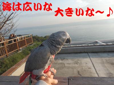 10_江ノ島