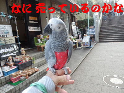 7_江ノ島2