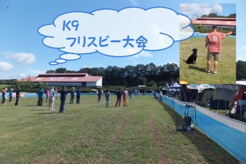 K9 フリスビー大会