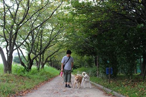 IMG_4732公園