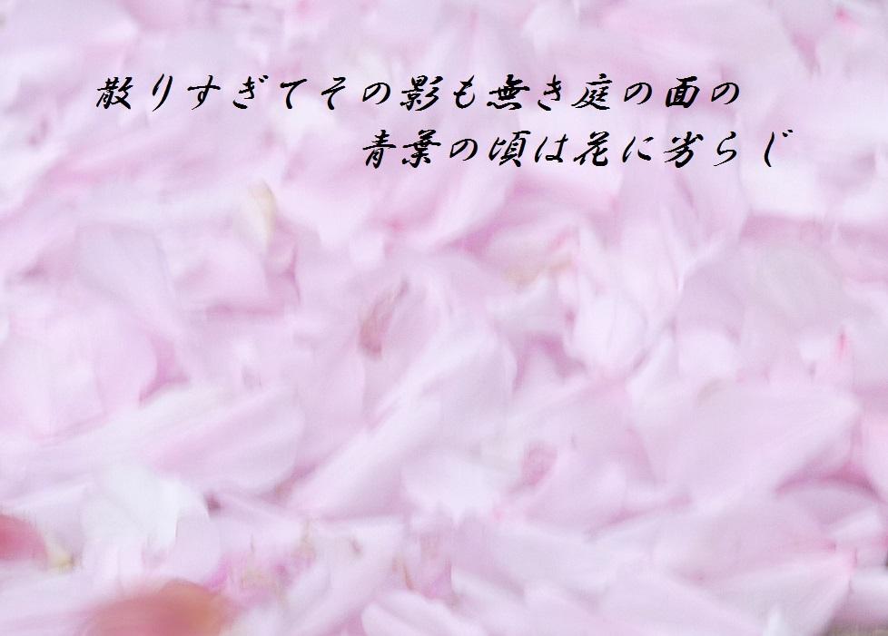 P11701171.jpg