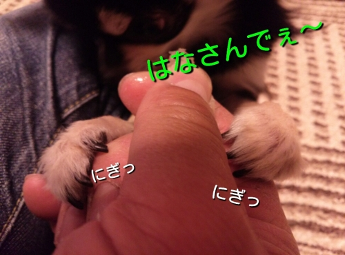 201403061946380fa.jpg