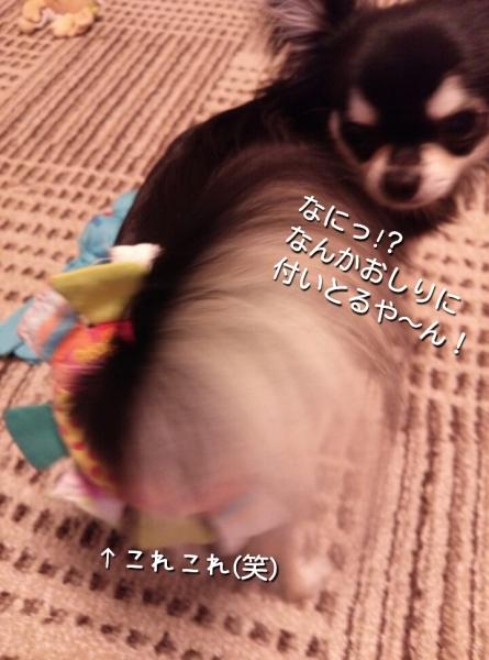 201405221822209ca.jpg