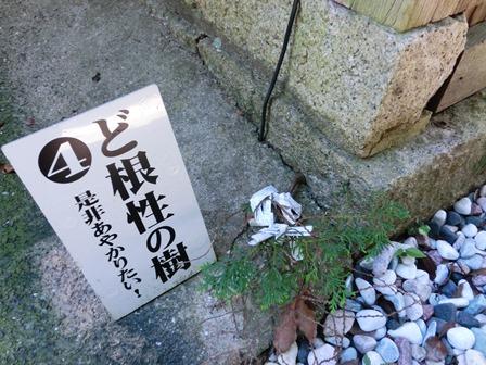 牛窓神社 (5)