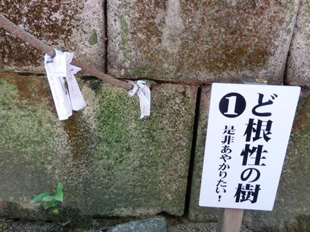 牛窓神社 (9)