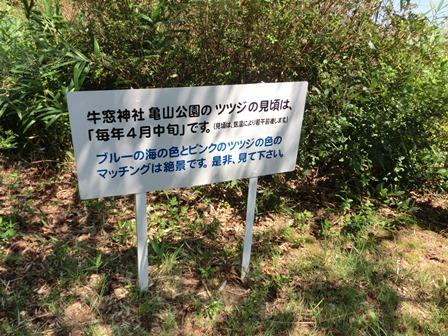 神社~洋亭 (7)