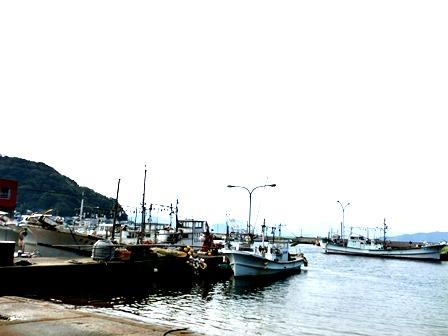 青海島くじら (1)