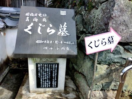青海島くじら (7)