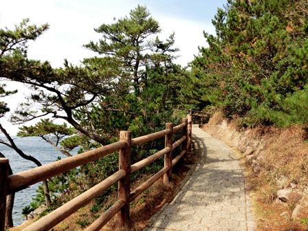 青海島自然公園 (6)