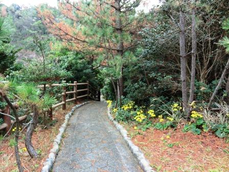 青海島自然公園 (11)