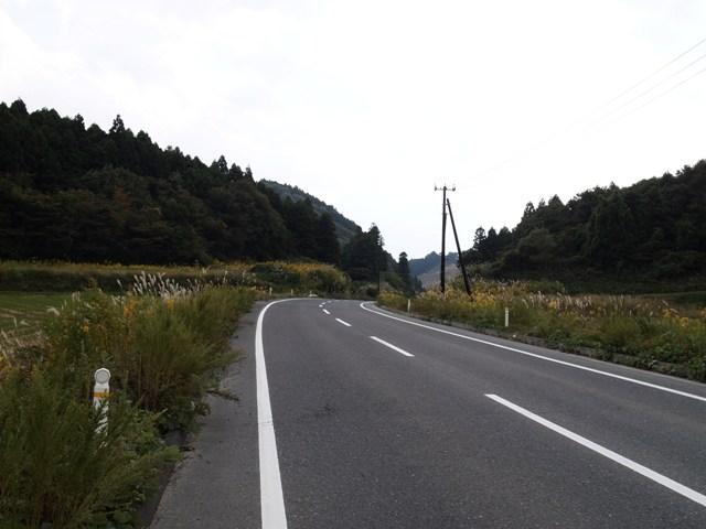 PA219735.jpg