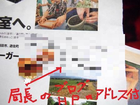 PA249872a.jpg