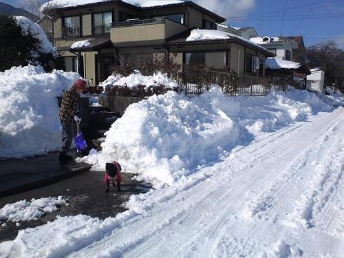 140216雪かき