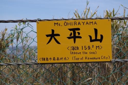 09kamakura2ohirayama.jpg