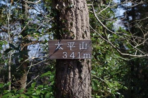29ohirayama.jpg