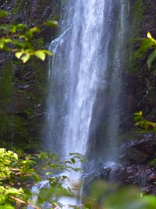 ニコニコ滝群F1_その2