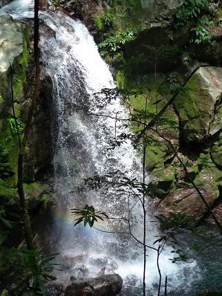 横見滝_その1