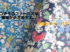 IMG_8820-1.jpg