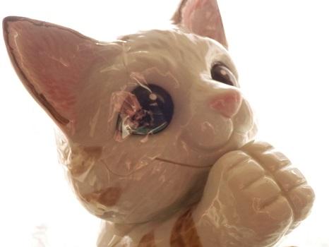 お願い猫2