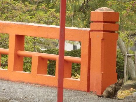 九華公園5