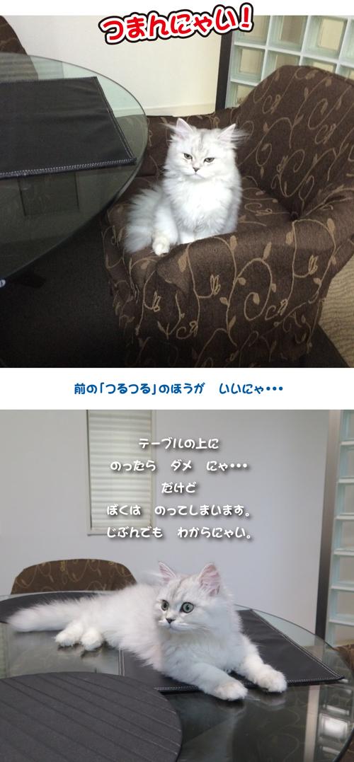 2014-0419-1.jpg