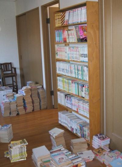 bookshelf10.jpg