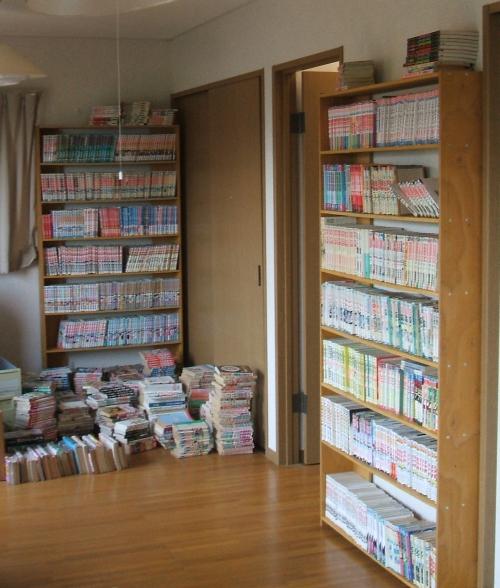 bookshelf12.jpg